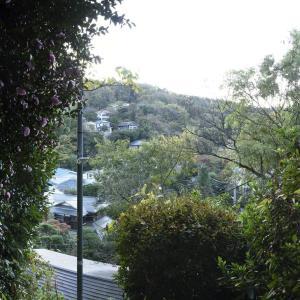 瓜ヶ谷の急坂にて