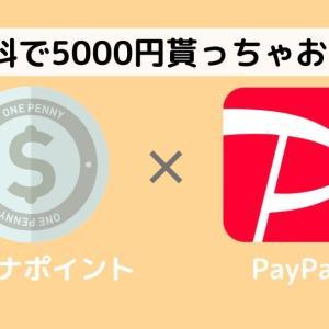 マイナポイントって知ってる?PayPayと連携して5000円貰おう!