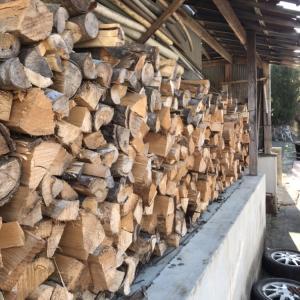 栗の木で薪作り