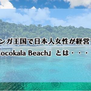 トンガ王国で日本人女性が経営する『Cocokala Beach』とは・・・?