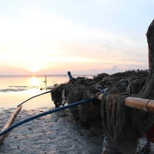 【潮時か】パラワン島生活 / フィリピン