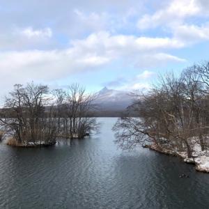 大沼で撮った雪の結晶