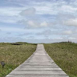 【石狩市の観光スポット】公園・海・自然が楽しめる~「はまなすの丘公園」