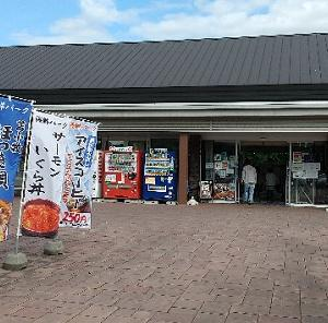 【ウトナイ湖】野鳥260種以上!バードサンクチュアリ・野生鳥獣保護センター・道の駅ウトナイの魅力