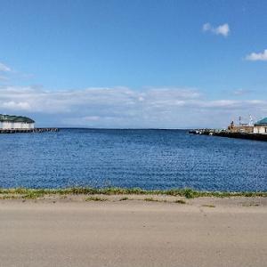 【秋の小樽運河】久しぶりに立ち寄ってみました。