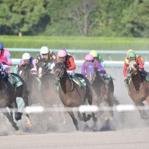 【面白い・変わった競走馬名】競馬場別にまとめてみました!