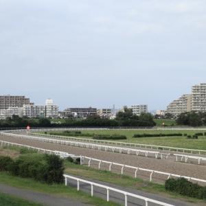 【面白い競走馬名】地方競馬~川崎競馬場編②