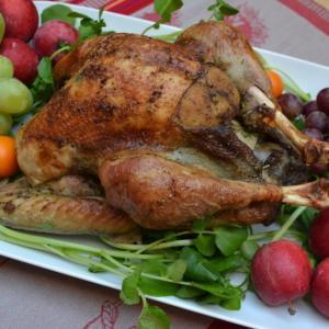 Roast Turkey with Gravy ローストターキーグレービーソース添え