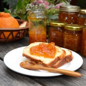 Orange Marmalade オレンジ マーマレード