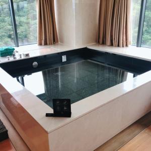 韓国で一番高級!?部屋にプールがある「バンヤンツリークラブ&スパ ソウル」