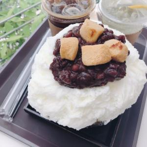光化門で美味しいピンスを!Cafe 느티 (ヌティ)