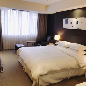 高速ターミナルにあるマリオット系列のホテル!「シェラトンソウルパレスカンナムホテル」