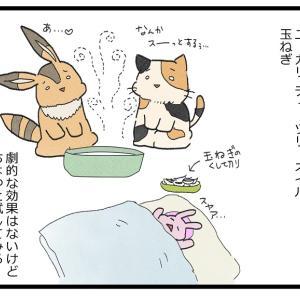 乳児の鼻水・鼻づまり対策 観察日誌58【0歳児】