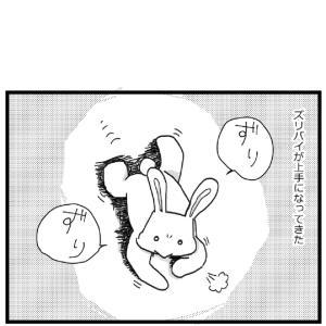 コドモドラゴン 観察日誌83【0歳児】