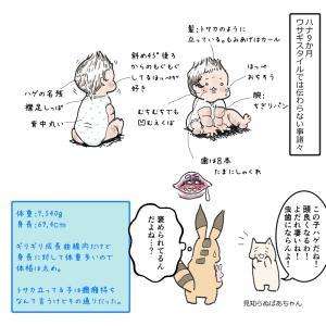 9か月の記録 観察日誌84【0歳児】