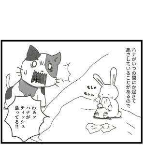 おはようセンサー 観察日誌97【0歳児】