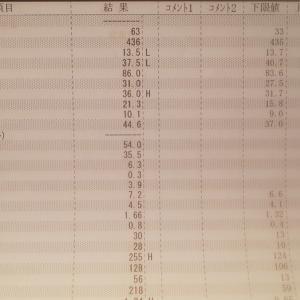 10月29日検査結果と費用・悪性リンパ腫経過検査