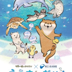 「可愛い嘘のカワウソ」× 新江ノ島水族館『えのすいだぬ!』が5/28(金)より開催中!