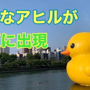 巨大なアヒルが大阪に出現!ラバーダックプロジェクト