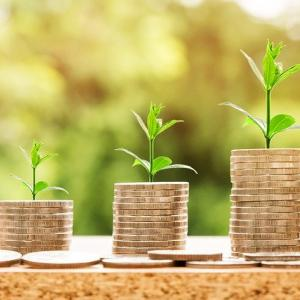 【運用成績・つみたてNISA】楽天ポイントで投資信託を毎月積立、2021年5月の投資累計金額(4,000円)時価評価額(4,223円)評価損益(223円)