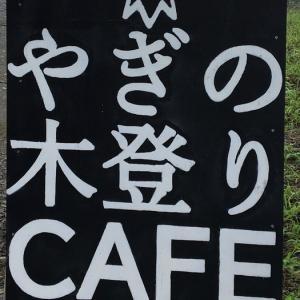 【ロードバイク】寄り道:やぎの木登りカフェ【富士山一周】