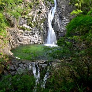 新神戸 布引の滝 撮影ポイントを探して撮影!