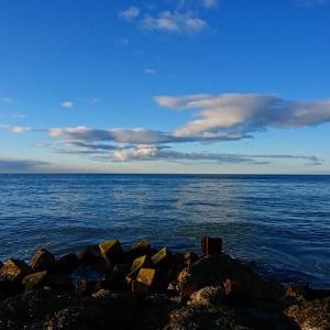 釣り具の売れ筋ランキングその2とか 2021年1月