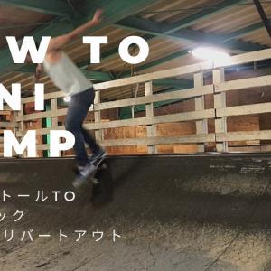 How To mini ramp☆ [FS5−0toテールロックBSテールリバートアウト]スケー