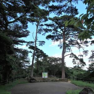 【宮城県・松島町】西行戻しの松公園