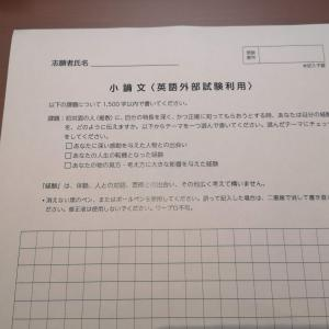 ICU 総合型選抜(AO入試)合格者インタビュー1 小論文