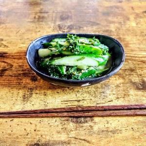 無限きゅうりのレシピはたくさんあるが本当に無限にきゅうり食べれる?