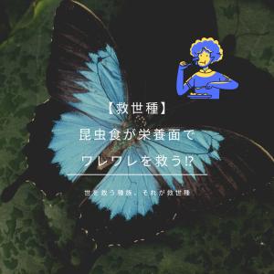"""【救世種】""""昆虫食""""が栄養面でワレワレを救う!?"""