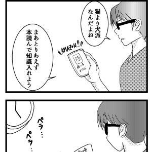 1:「猫っスか?」