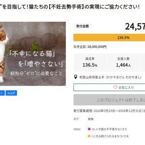 和歌山市が 猫を利用して詐欺?