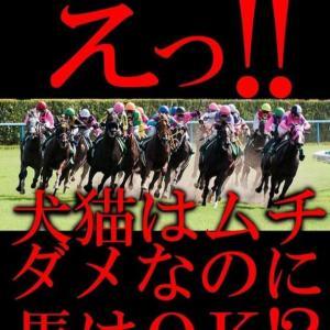 日本国内の馬の一生