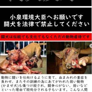 【再掲】闘犬反対アクション(北海道)