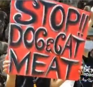 ユーリン犬肉祭の映像