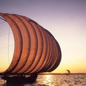 茨城県息づく霞ケ浦の伝統 観光帆引き船、行方で操業