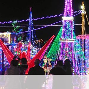 趣味がこうじて「鉾田のテーマパーク」に、10万球輝く