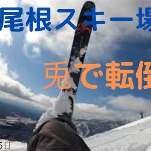 八方尾根スキー場・兎で転倒(2020年3月25日)