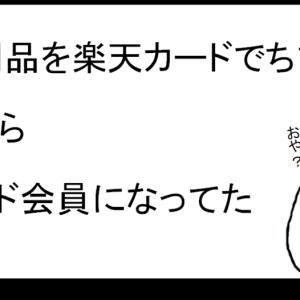 【楽天ポイ活】18日(市場の日)に楽天でお買い物。非接触型体温計(中国製)を購入。