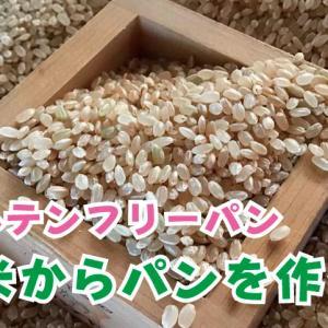 1合の生米からパンを作ってみた 生米パンは究極のグルテンフリーパン
