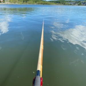 梅雨入り前には釣りだめしておく。