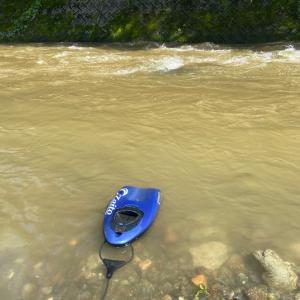 本日の桂川の濁りについて