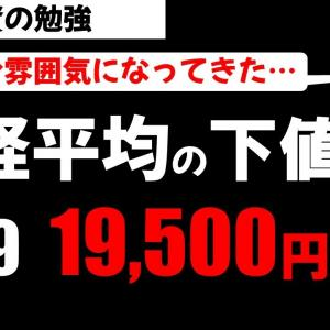 [株おすすめ]日経平均株価 下値の目途は19500円!?8月中旬がターゲットか?投資の勉強【草食系投資家LoK】