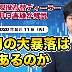 [FXおすすめ]FX<井口喜雄のディーラーズアイ_2020/8/11>8月の大暴落はあるのか