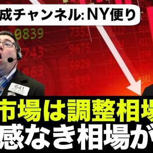 [投資おすすめ]【米国株 9/21】中国恒大ショックは来るのか?オプション市場は楽観視。