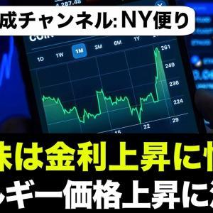 [投資おすすめ]米国株は金利上昇に怯えている。テスラ絶好調!世界的エネルギー価格の上昇に注意!