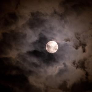 月明かり 眠れなき夜を照らす