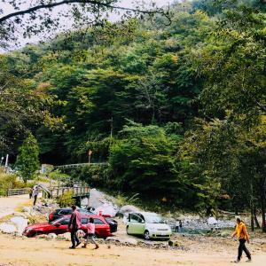 キャンプに行きたい2020夏